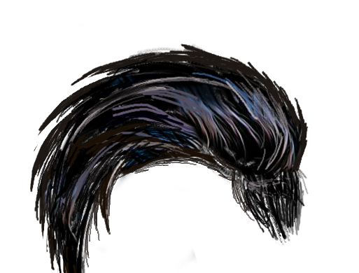 Black hair transparent png. Brand new cb hairs