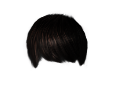 Black hair wig png. Download hairstyles free transparent