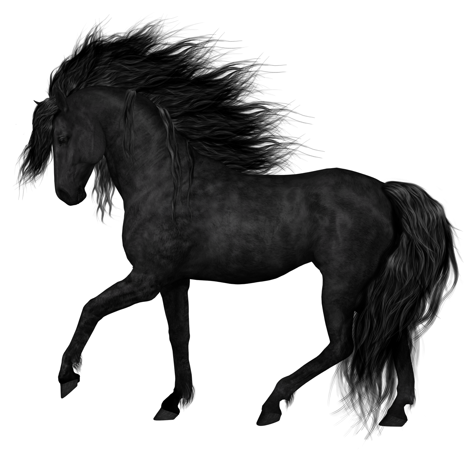 Black horse png. Clipart picture gallery yopriceville