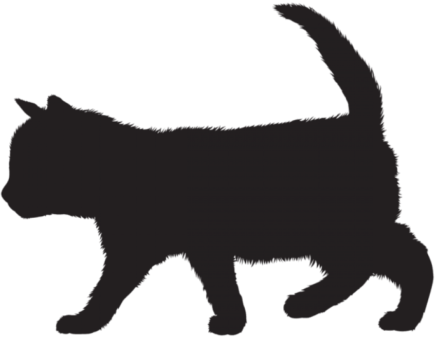 Black kitten png. Silhouette free images toppng
