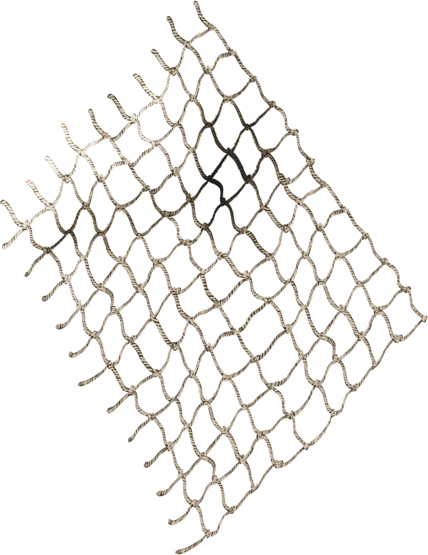 Black net png. Collection of drawing