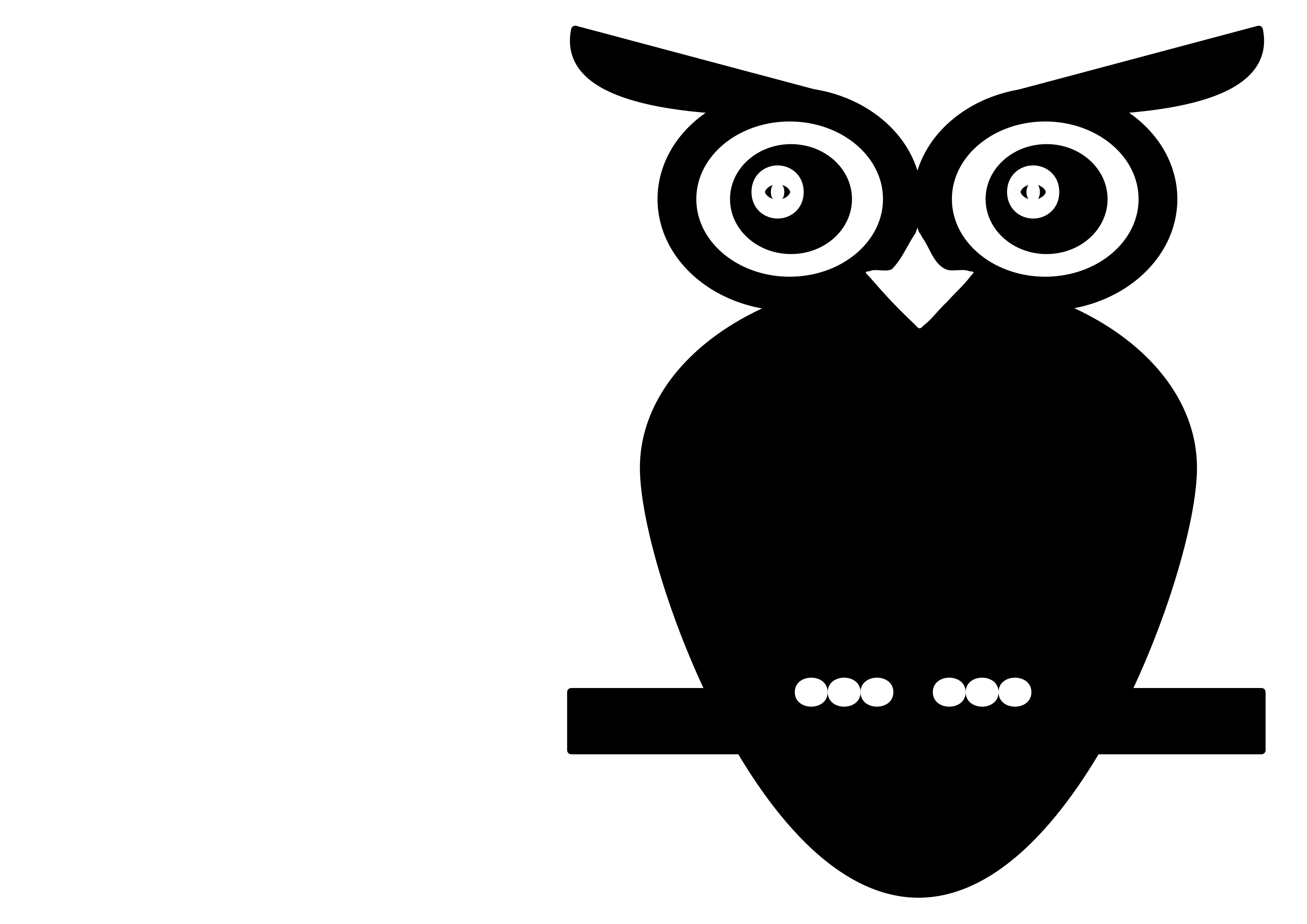 White owl png. Black and icons free