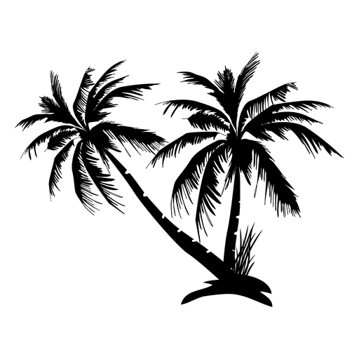 Palm leaf silhouette png. Black isolated tree transparent