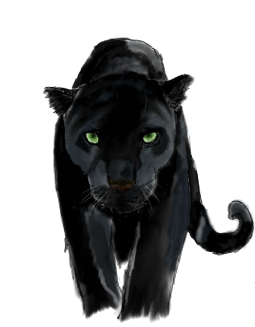 Panther png. Transparent images pngio
