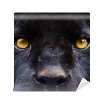 Black panther eyes png. The of a wall