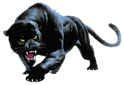 Black panther images png. Transparent free only fighting