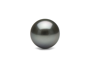 Transparent pearls black. Tahitian information pearl paradise