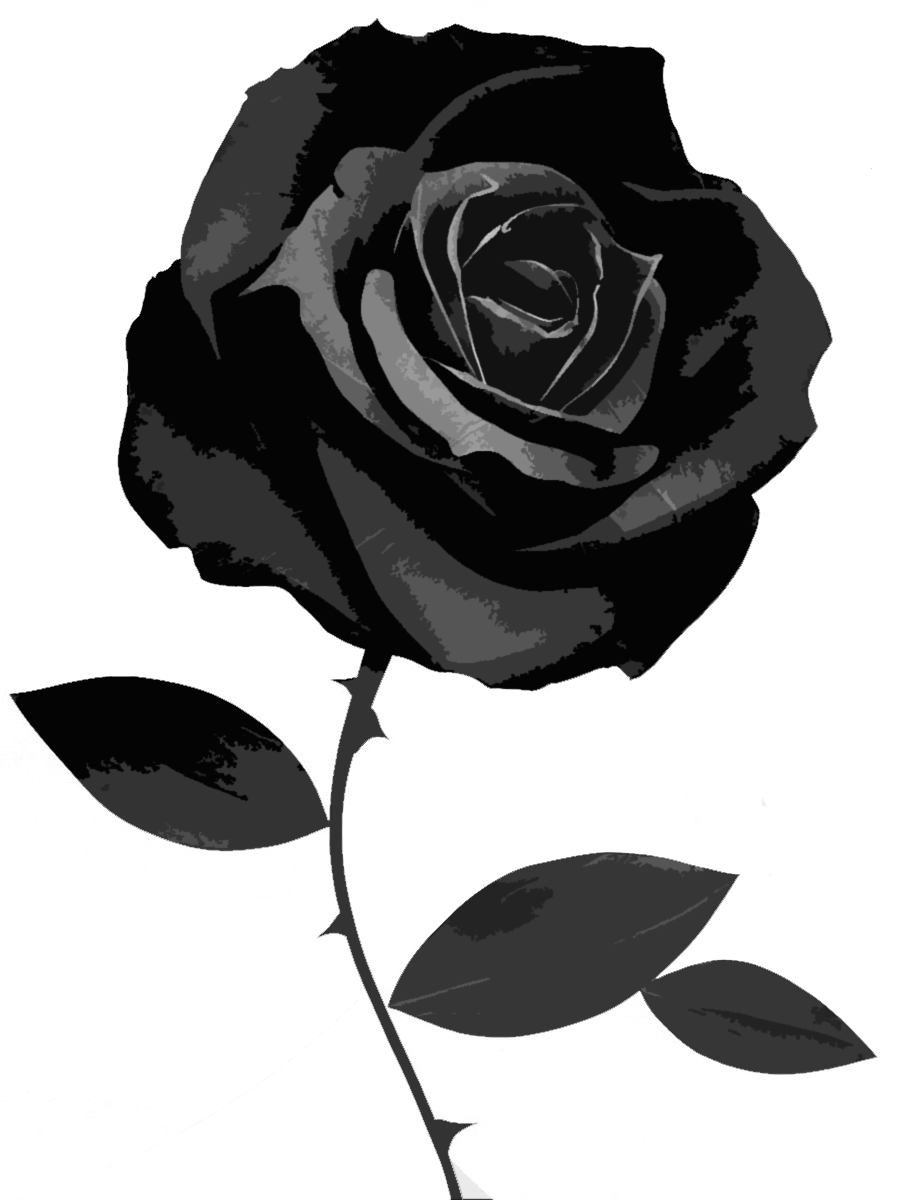 Black roses png. Rose desktop wallpaper symbol