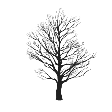Black images vectors and. Cartoon tree png jpg black and white stock