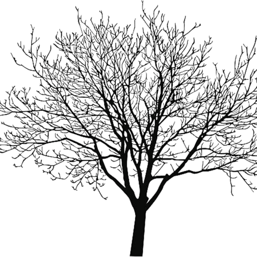 Black tree png. Cropped the walnut kitchen