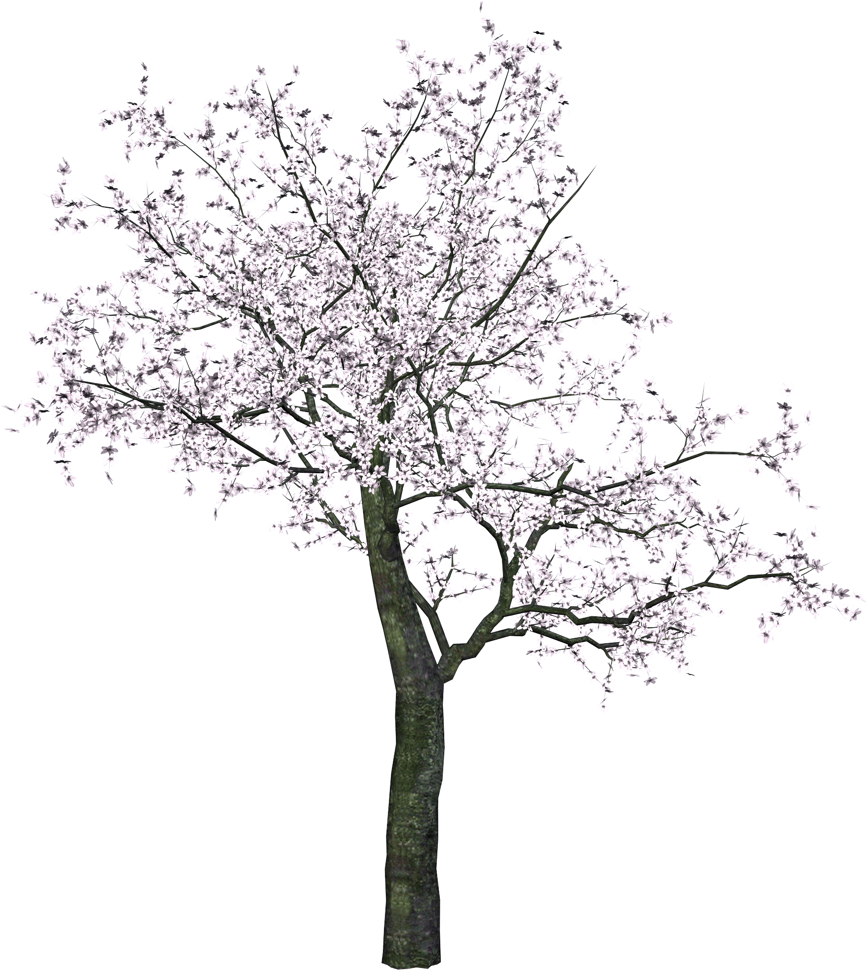Black trees png. Japanese tree transparent stickpng