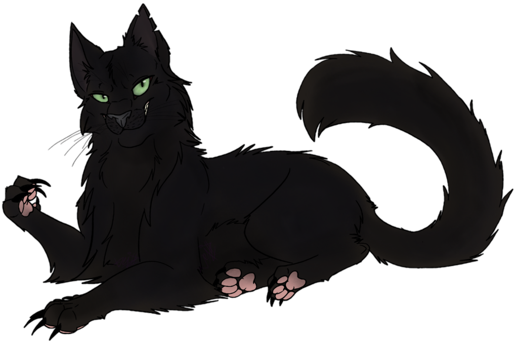 Png version of warrior cats. Image rp rowanthorn by