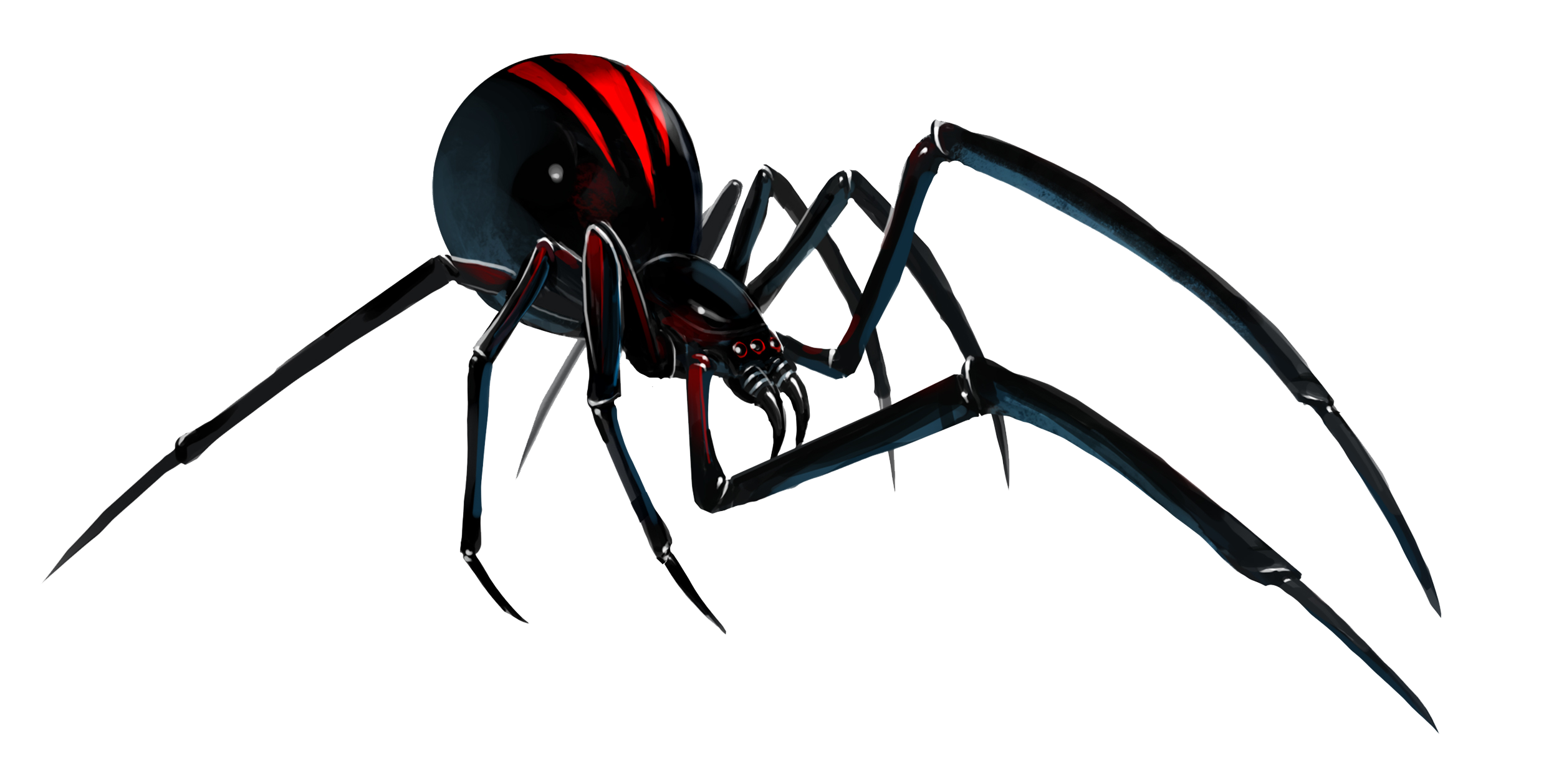 Black widow file mart. Spider png image royalty free stock