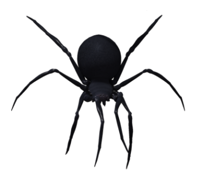 Black widow spider png. Image dlpng download with