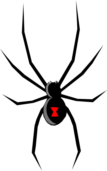 Black widow spider png. Cartoon clip art wood