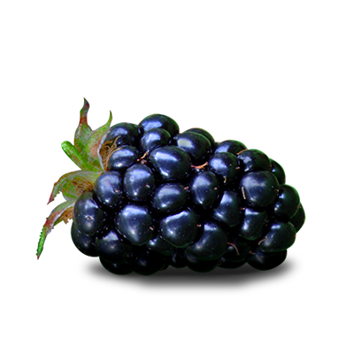 Fruits transparent blackberry. Fruit png images all