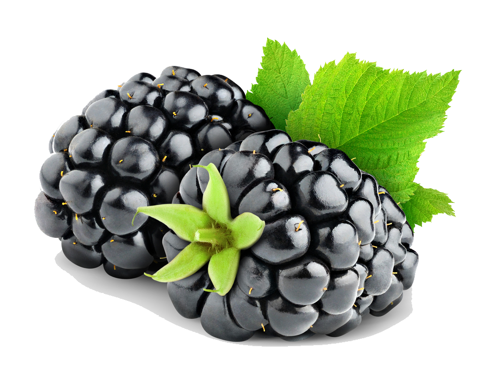 Fruits transparent blackberry. Free fruit png images