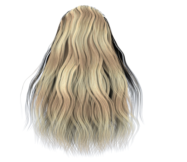 Blond hair png. Free stock images full
