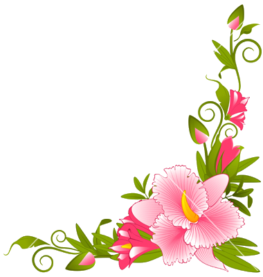 Vector flowers png. Free flower border download
