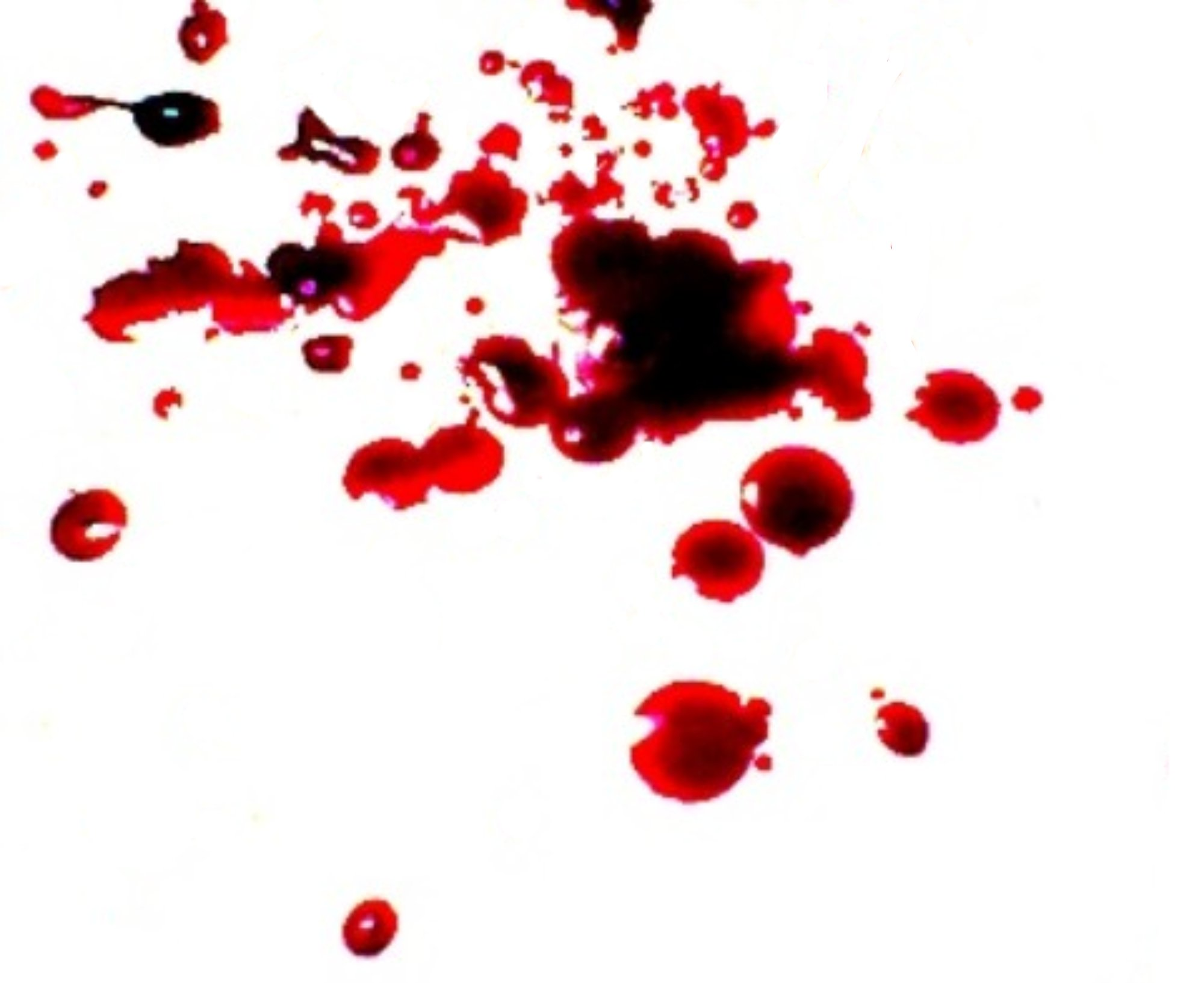 Blood clipart fake blood. My quick recipe for