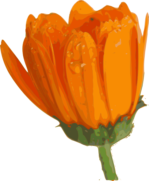 Blooming flower png. Clip art at clker
