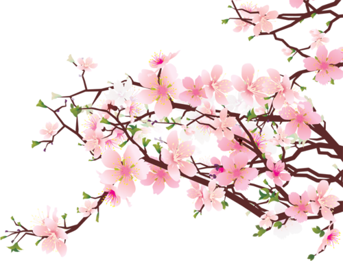 Blossom clipart kawaii. Transparent tumblr shared