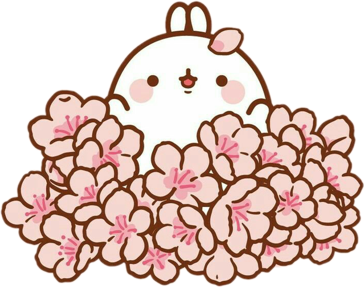 Blossom clipart kawaii. Freetoedit cute molang sakura