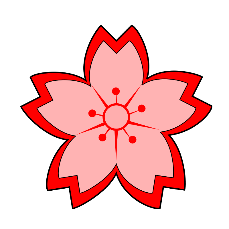 Drawing chinese flower. Free cartoon cherry blossom