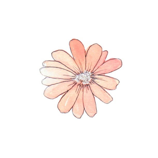 Blossom clipart tumblr transparent. Flowers drawing at getdrawings
