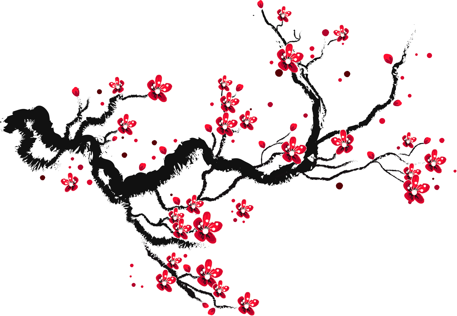 Paper sketch ink blossoms. Blossom drawing cherry clip art black and white download