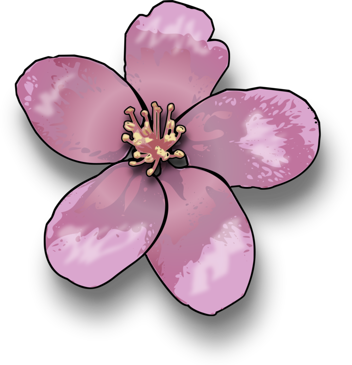 Blossom drawing clipart. Download line art computer