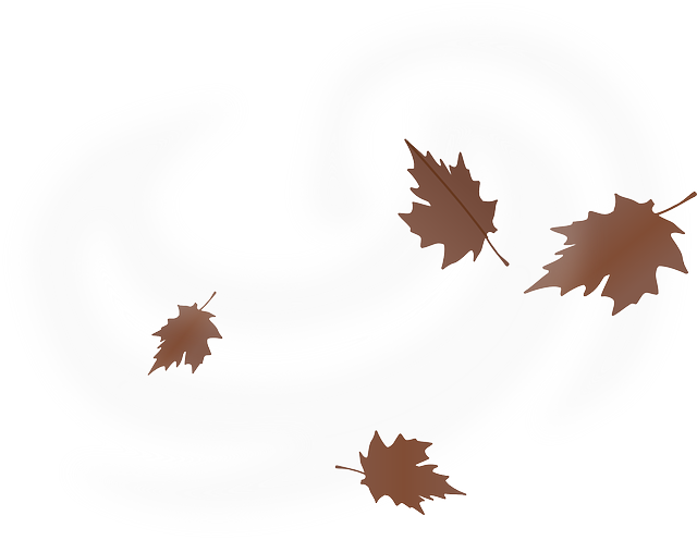 Leaves blowing png. Image result for drawn