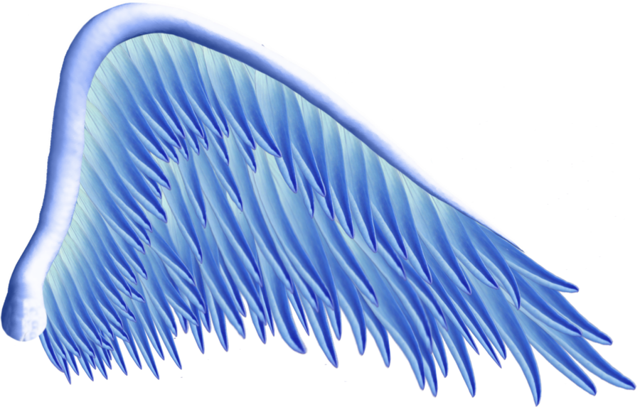 Blue wing png