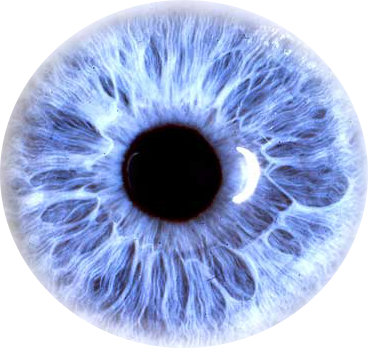 Blue eye png. Transparent images pluspng eyes
