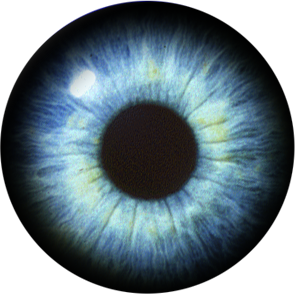 Blue eye png. Transparent pictures free icons