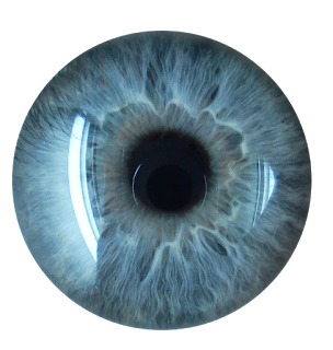 Transparent eye png. Eyes hd images pluspng