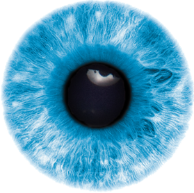 Eyes images free download. Transparent eye png image freeuse stock