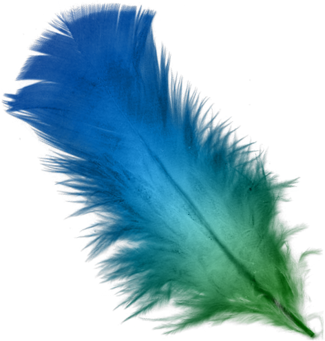 Feather png. File blue and green