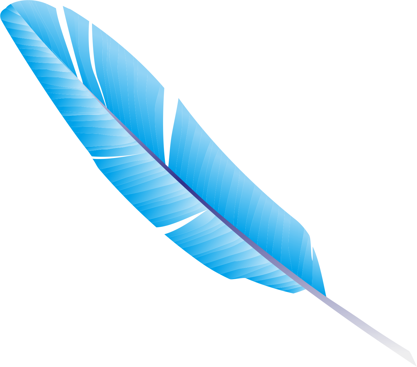 Blue feather png. Coreldraw transprent free download