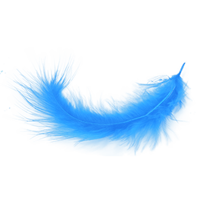 Blue feather png. Transparent stickpng