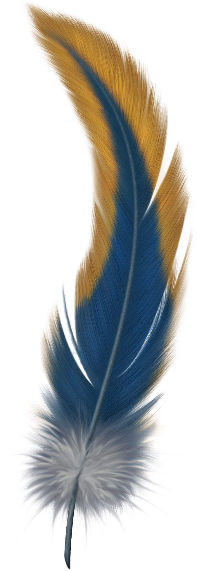 colorful feathers png