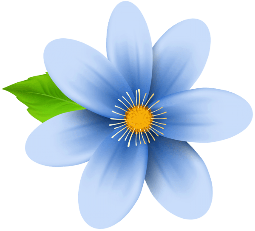 Blue flower png. Download images background toppng