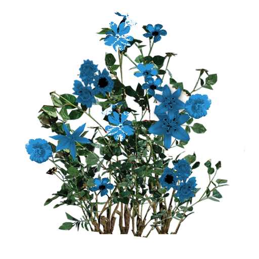 Blue flowers png. Script library flower bunchpng