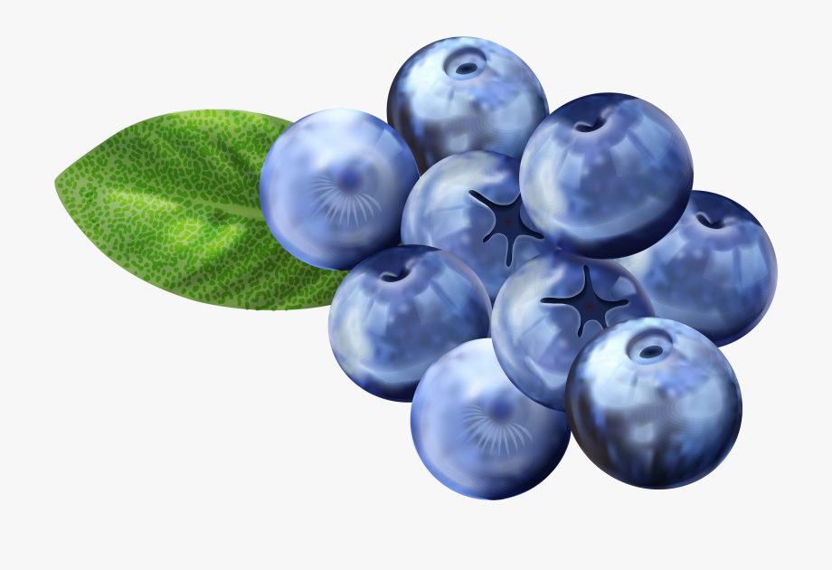 Small blueberry. Clipart png free clip