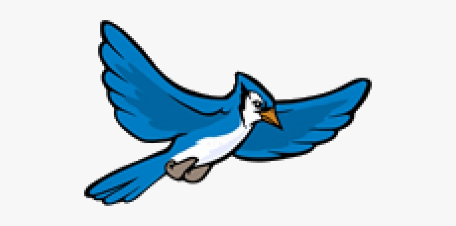 Blue jay. Clipart flying transparent png