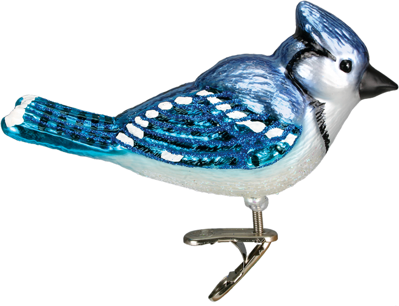 Blue jay png. Download hd old world