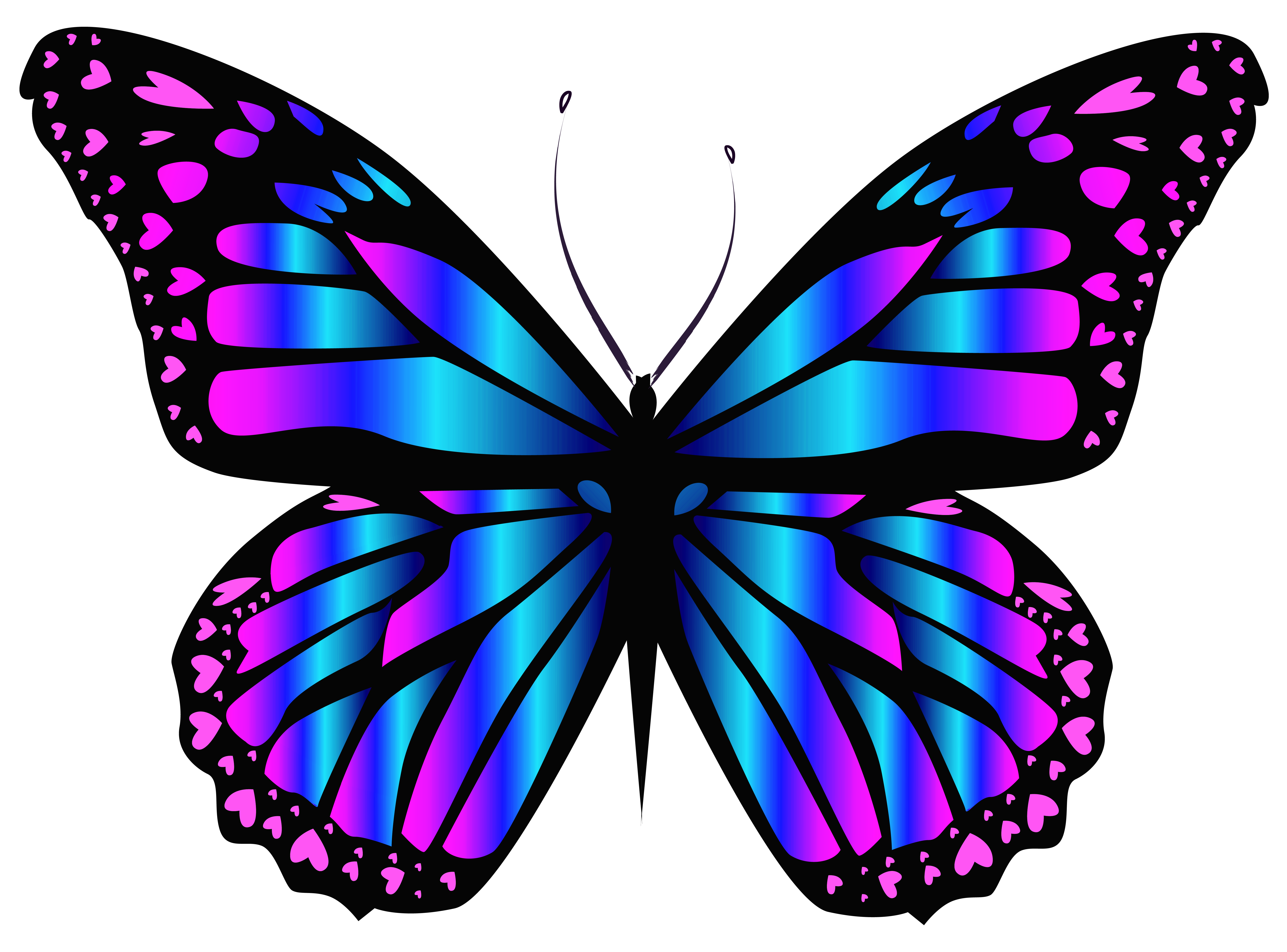 Butterfly .png. Blue and purple png