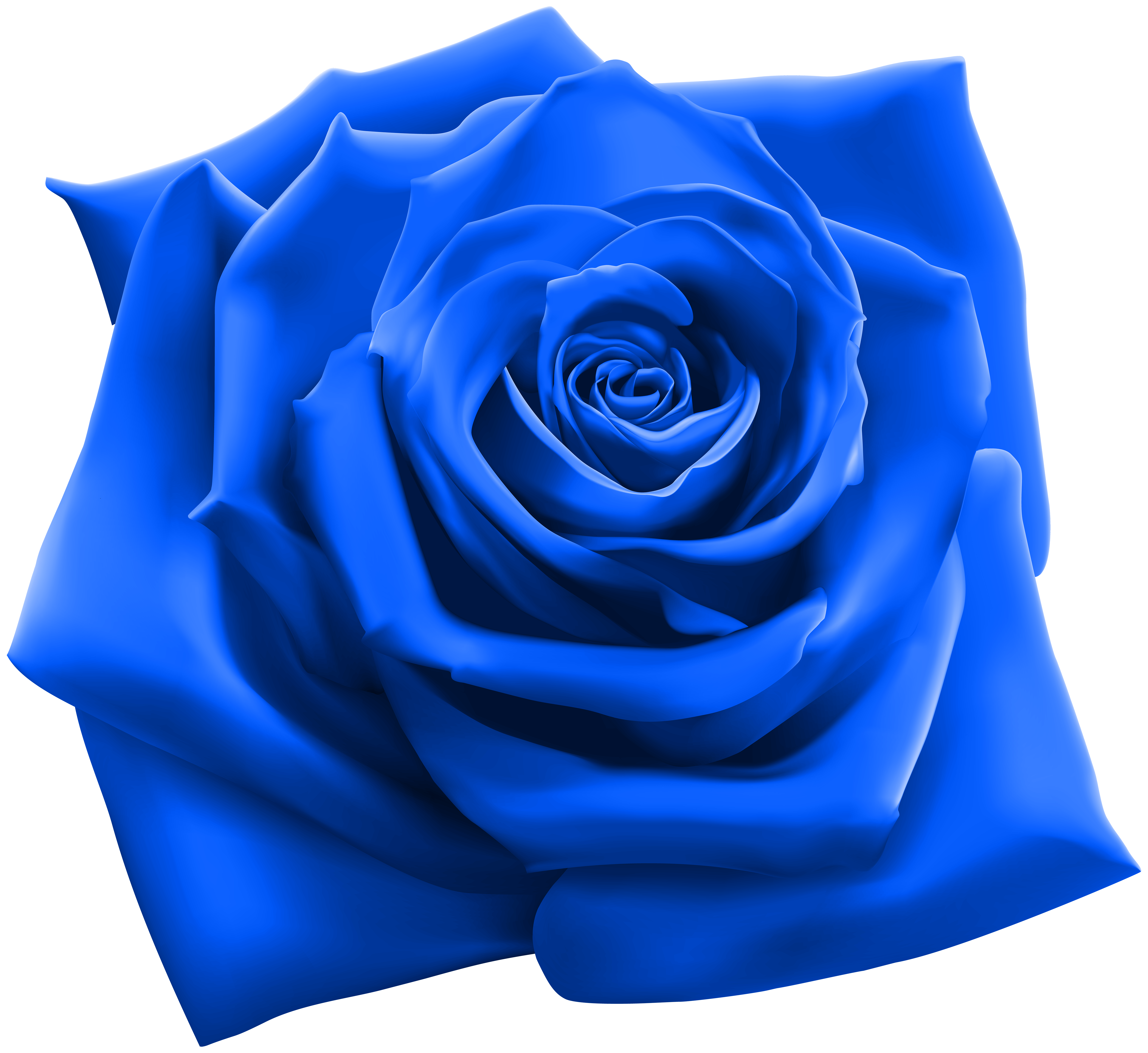 Blue rose png. Clipart image gallery yopriceville