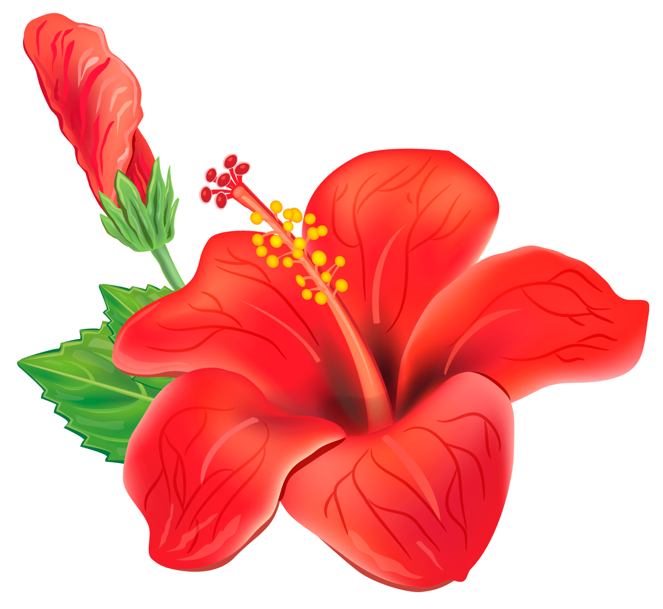 Blue tropical flower png. Red exotic clipart picture