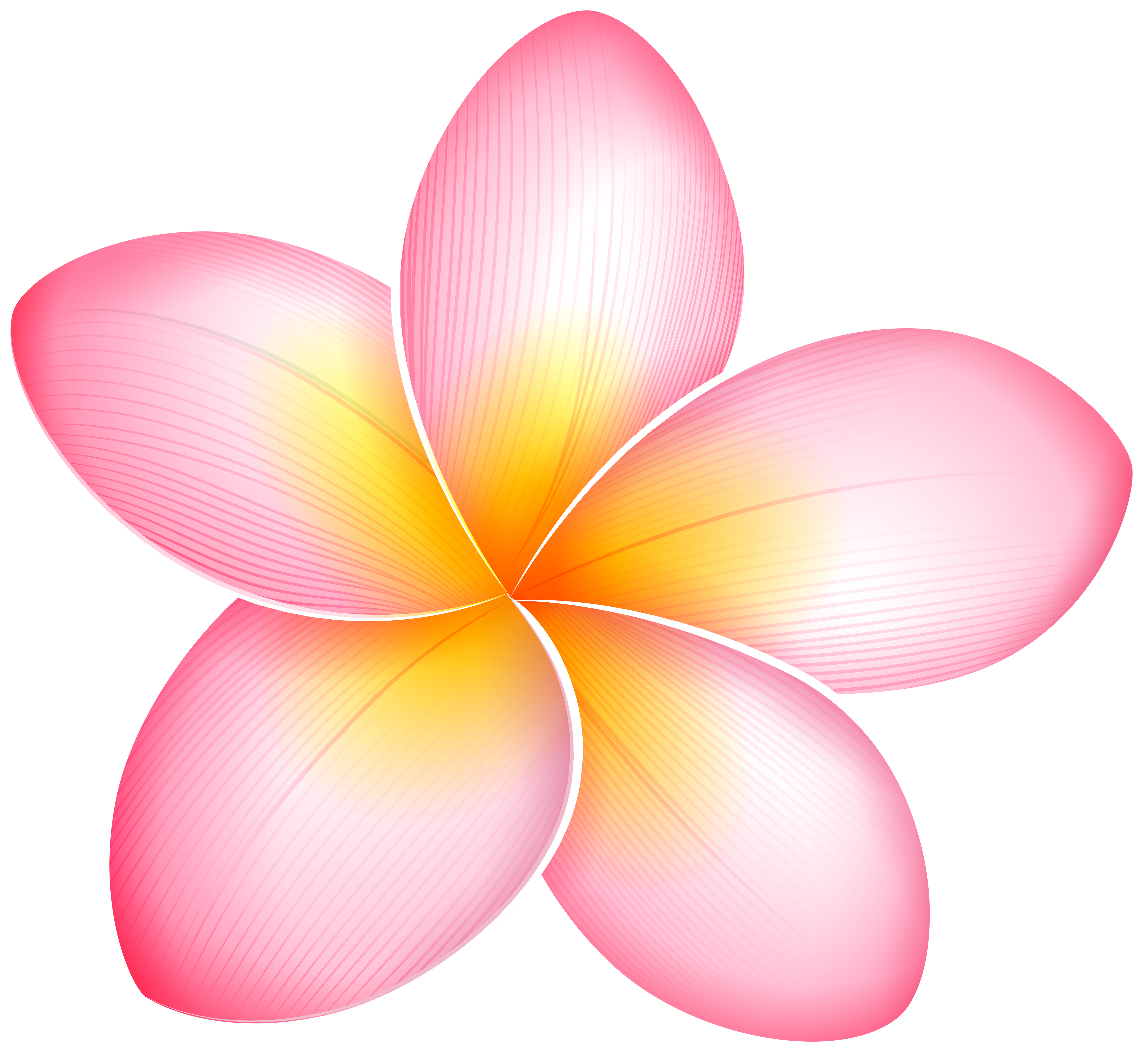Blue tropical flower png. Pink exotic clip art